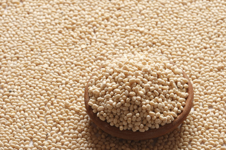 referred:  Urad, also referred to as urad dal, udad dal, urd bean, urd, urid, black matpe bean, black gram, black lentil
