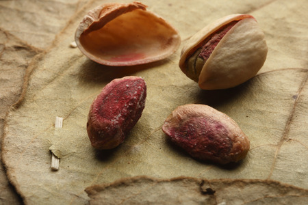 pista: Pista -  The pistachio  Pistacia vera L , Anacardiaceae or sometimes Pistaciaceae  is a small tree native to mountainous regions of Iran, Turkmenistan, Turkey and western Afghanistan, that produces an important culinary nut