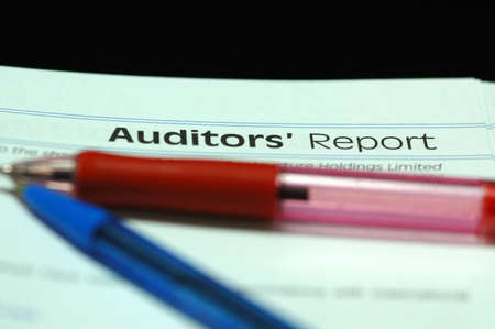 auditors: Auditors Report
