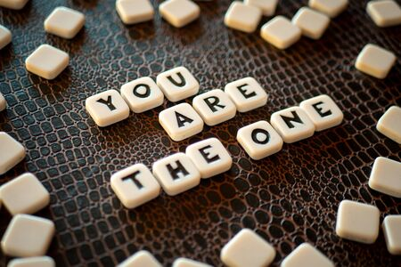 """Crossword game pieces forming the phrase """"You are the one"""""""
