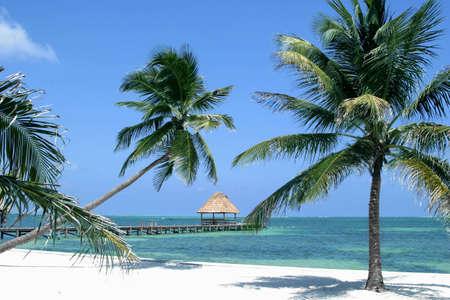 Beatiful Belize Beach Stock Photo - 7796184