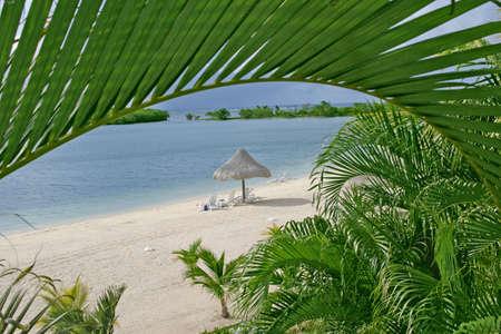 Sunny beach in a tropical island