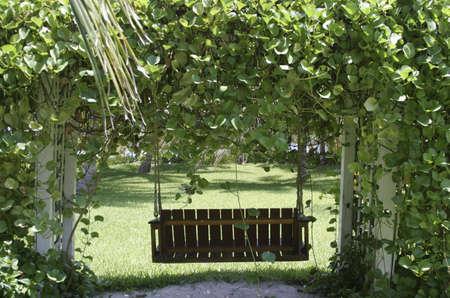 Lovely Swing in the Backyard Stok Fotoğraf