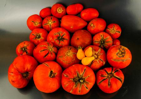 Surtido de tomates de diferentes variedades