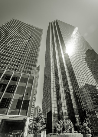 Glowing Glass Skyscrapers in Black and White