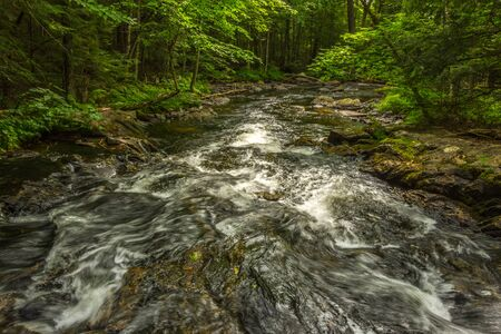 Small river cascading in the forest Stock Photo