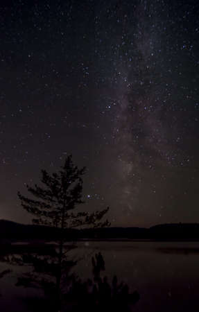 View of the night sky from my campsite