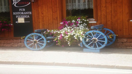 brings: The cart brings flowers (Record 1)