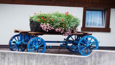 brings: The cart brings flowers (Shooting 2) Stock Photo