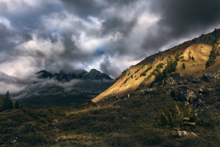 This image was taken in the area of Praettigau, in the canton of Grisons in Switzerland on a rainy day. You see in the back how rainy clouds are approaching the area. In the foreground you see a mountain slope. Standard-Bild - 115069024