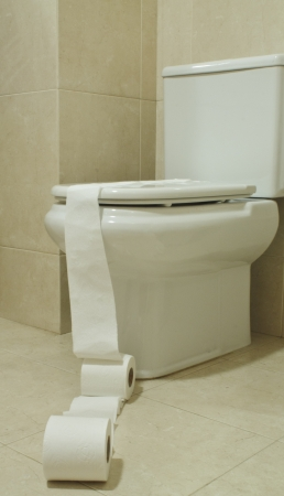 macro from toilet papper with toilet seat behind Stock Photo - 17923067