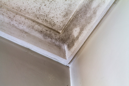 ceiling texture: Water stains on the roof of a house  Stock Photo
