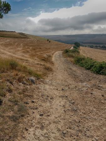 The path of a st james way stage in direction to Santiago de Compostela in Spain Foto de archivo - 117135485