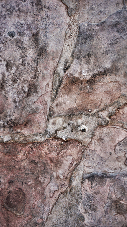 Macro from Beautiful Abstract Grunge Decorative Stucco Wall Background Foto de archivo - 117135627