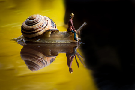 Snail Ship Stock Photo
