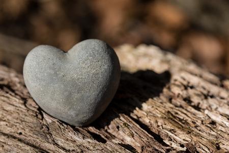 liefde: Liefde