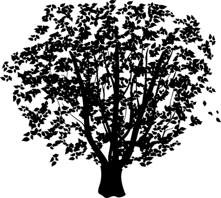 black tree Illustration
