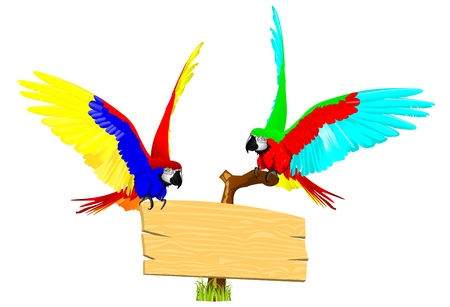 couple bird Vector
