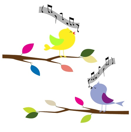 tropical bird: birds singing