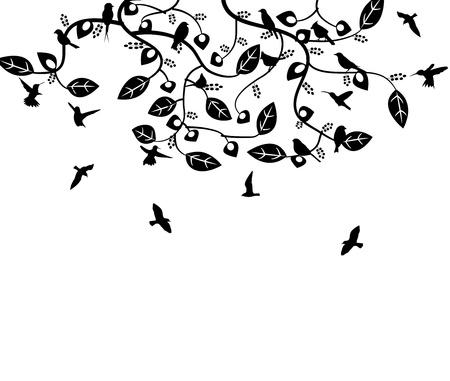 many birds and floral leaf Illustration