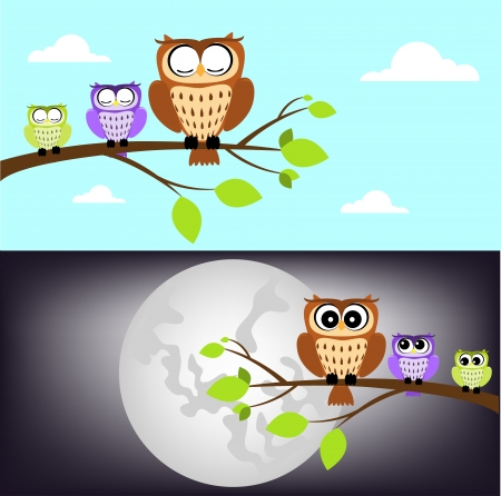 fall winter: day and night owl Illustration