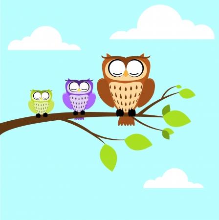 blink: owl