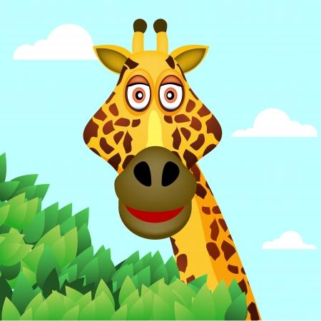 jirafa fondo blanco: jirafa y el árbol