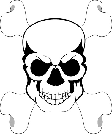 bone and skull Vector