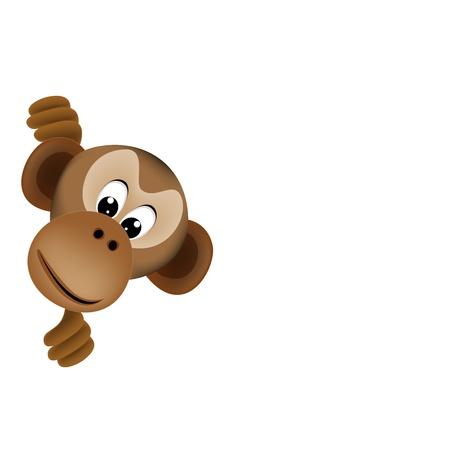 chimp: cute monkey