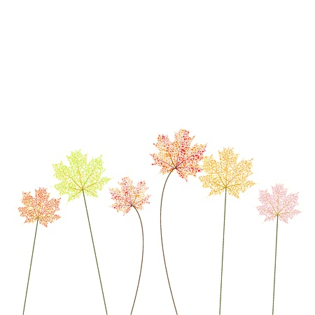 autumn flowers Stock Vector - 19468561