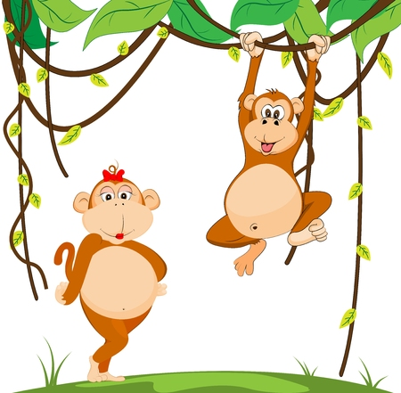 couple monkey Vector