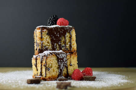 Chocolate sponge cake with red berries