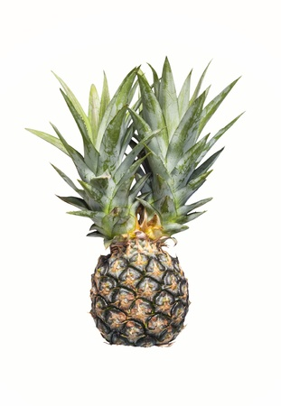 Close up pineapple isolated on white background Stock Photo