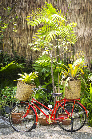 vasas: Red bicycle decorated with plants in the garden Stock Photo