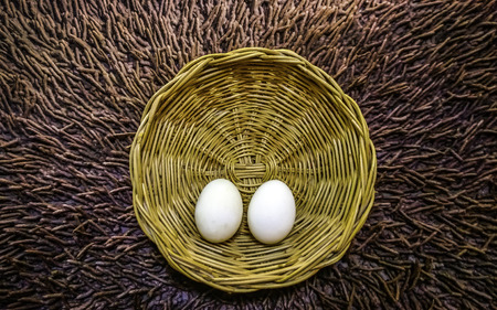 Closeup two white egg in basket background photo