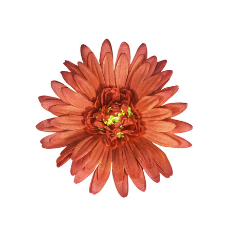 artifical: Red artifical flower isolated on white with clipping path Stock Photo