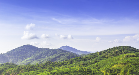 Landscape of green mountant and blue sky Stock Photo