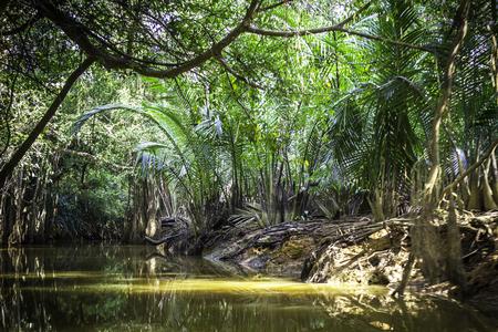 phang nga: Canal at Phang Nga Province in Thailand Stock Photo