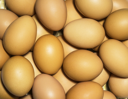 Stack of fresh chicken eggs for background