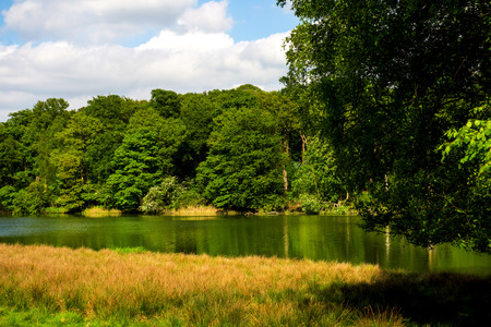 l agriculture: Green Landscape, Lake and Blue Sky in the Park