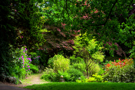 Beautiful English Garden in Summer, England, UK Stock Photo