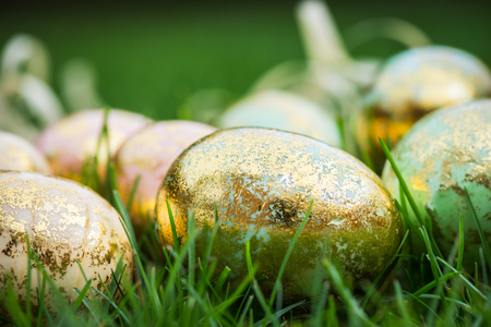 hapy: Golden Easter Eggs on green Grass Background