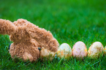 hapy: Bunny and Golden Easter Eggs