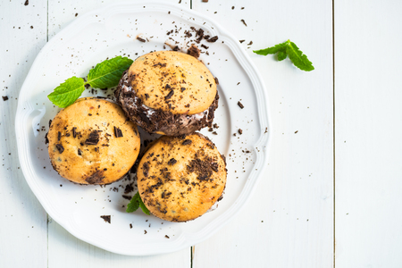Vanilla and Chocolate Ice Cream Sandwich, Ice Cream between Two Cookies, Light Background Stock Photo