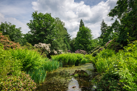 national trust: Pond in Beautiful English Public Garden in Summer, England, UK