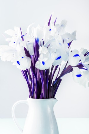 Beautiful White Iris Flowers in the Vase, minimal art, saturated image