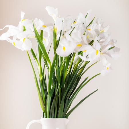 Beautiful White Iris Flowers in the Vase, minimalistic style