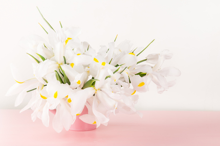 Beautiful White Iris Flowers on Pink Background, Copy Space Stock Photo