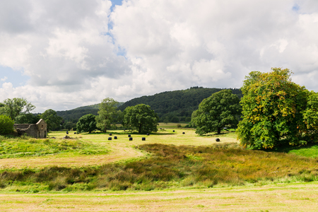 Prairie pittoresque vue pendant la saison des récoltes dans le parc national de Lake District pendant l'été, Cumbria, Angleterre, Royaume-Uni Banque d'images