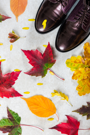 Trendy Leather Lace Up Brogues with Leaves. Composition made from autumn leaves. Flat lay, top view 免版税图像
